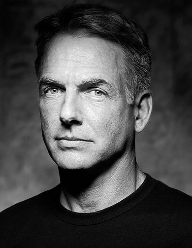 390px-Mark_Harmon_1_edit1